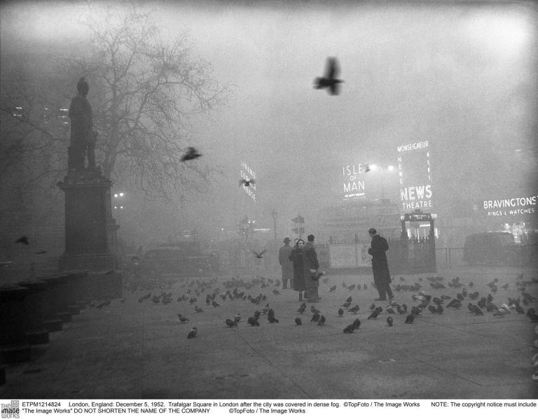 Birds_in_Trafalgar_Square__TopFoto_The_Image_Works.jpg